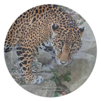 Jaguar On Rocks Party Plate