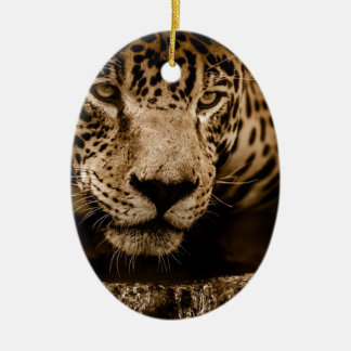 Jaguar Water Stalking Eyes Menacing Fearsome Male Ceramic Ornament