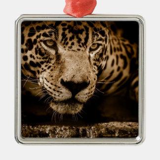 Jaguar Water Stalking Eyes Menacing Fearsome Male Metal Ornament