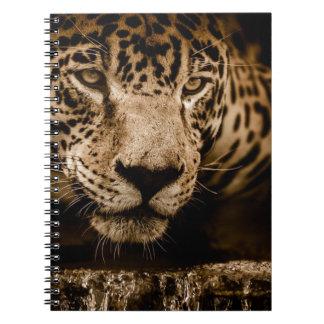 Jaguar Water Stalking Eyes Menacing Fearsome Male Notebook