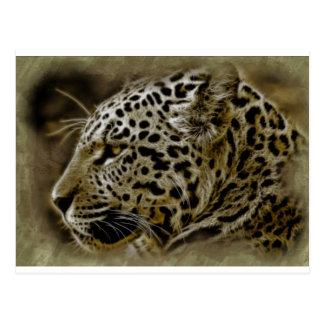 Jaguar Wild Cat Spots African Safari Destiny Post Card