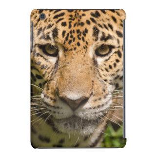 Jaguarclose-up of face iPad mini retina case