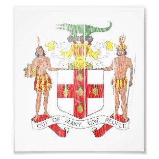 Jamaica Coat Of Arms Photograph