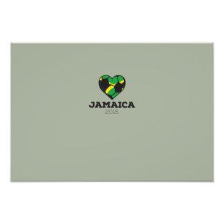 Jamaica Soccer Shirt 2016 Photograph