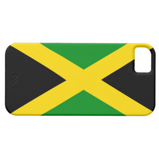 Jamaican Flag Fashion Case
