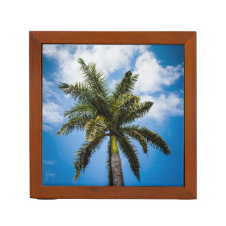 Jamaican Palm Tree Desk Organiser