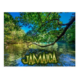 Jamaica's Blue Lagoon, Port Antonio Postcard