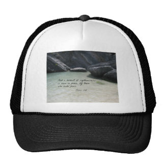 James 3:18 And a harvest of righteousness... Trucker Hat