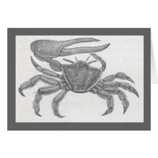 James Johonnot - Fiddler Crab Card