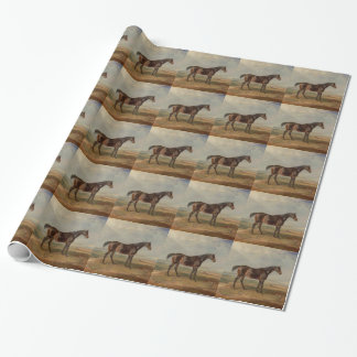 James Ward - Dr. Syntax, a Bay Racehorse Wrapping Paper