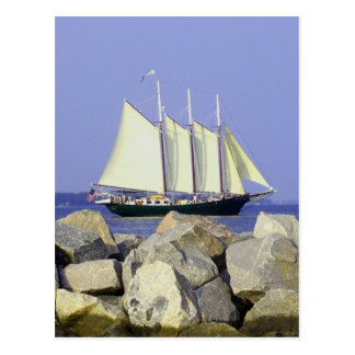 Jamestown Sailboat Postcard