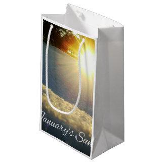 jan-sun-10x small gift bag