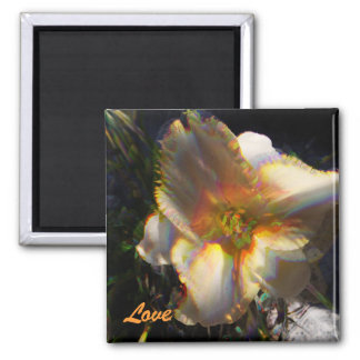 Janice's Lilly, Love Square Magnet