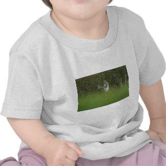 january 15th 054.JPG Tshirts