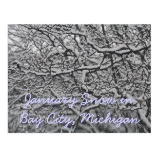 January Snow in Bay City, Michigan Postcard