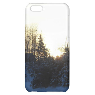 January Winter Morning iPhone 5C Cases