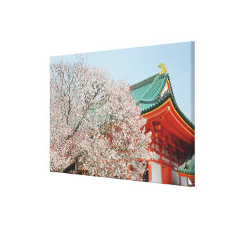 Japan, Kyoto. Cherry blossom of Shinto Stretched Canvas Print