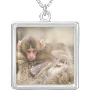 Japan Nagano Jigokudani Snow Monkey Baby Custom Jewelry