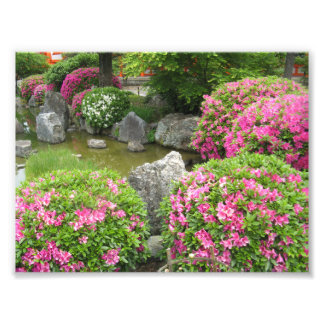 Japan stone garden with pink rhododendron flowers photo print