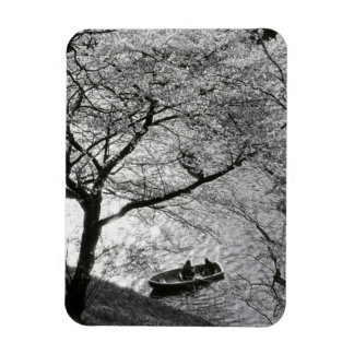 Japan, Tokyo. Cherry blossoms in the Imperial Rectangular Photo Magnet