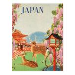 Japan Vintage Travel Poster Postcards