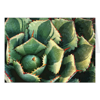 Japanese agave notecard