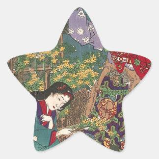 Japanese Beautiful Geisha Samurai Art Star Sticker