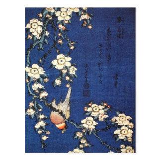 Japanese Bush Warbler and Weeping Cherry (Hokusai) Postcard