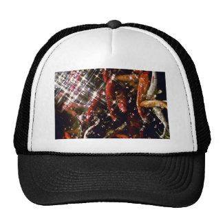 Japanese Carp - Oahu Hats