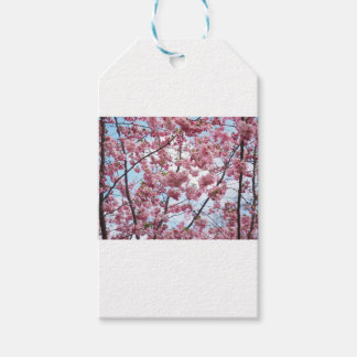 Japanese Cherry Blossom Gift Tags