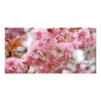 Japanese Cherry blossom Custom Photo Card