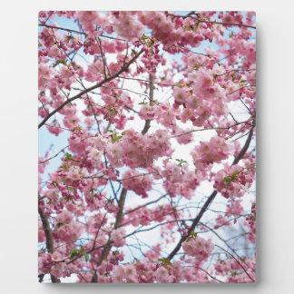 Japanese Cherry Blossom Plaque