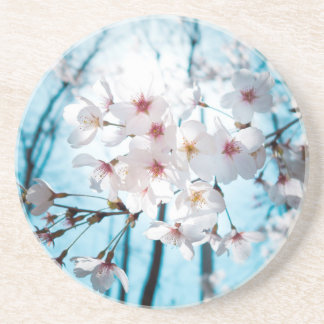 Japanese Cherry Blossom Zen Sandstone Coaster