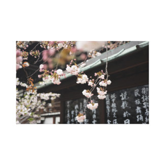 Japanese Cherry Blossoms Canvas Print