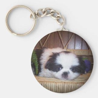 Japanese Chin Puppy Key Ring