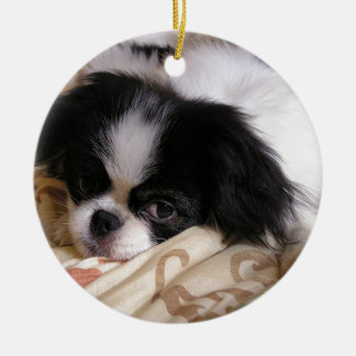 Japanese_chin puppy.png ceramic ornament