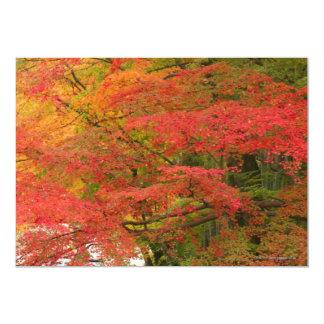 Japanese Fall Foliage Card