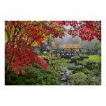 Japanese Garden in a Foggy Fall Morning Poster