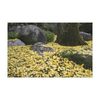 Japanese garden of ginkgo gallery wrapped canvas