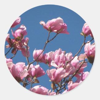 Japanese Magnolia Blooms Round Sticker