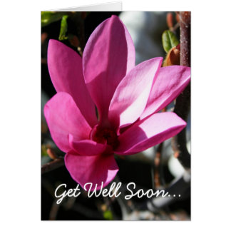 Japanese Magnolia Get Well Soon greeting card