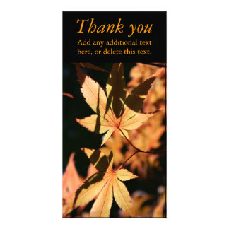 Japanese Maple 1 Autumn Colors Thank You Photocard Customized Photo Card