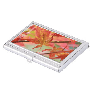 Japanese Maple Business Card Holder