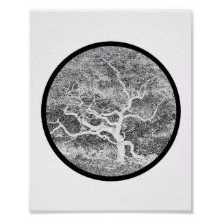 Japanese Maple Form Posters