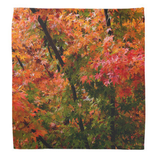 Japanese Maple in Fall Bandana