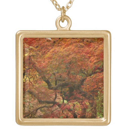Japanese maple in fall color 4 pendants