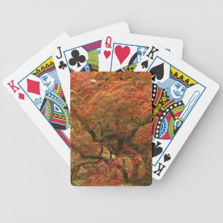 Japanese maple in fall color 4 bicycle card decks
