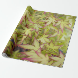 Japanese Maple Leaf Gift Wrap Wrapping Paper