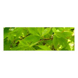 Japanese Maple Leaf Profile Card Business Cards