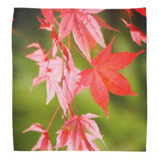 Japanese Maple Leaves Bandana